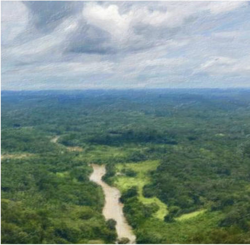 Instituto Puyanáwa. Guardians de la Amazonia