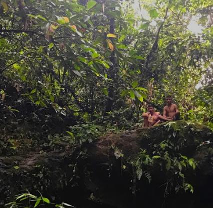 Territorio indígena. Guardians de la Amazonia